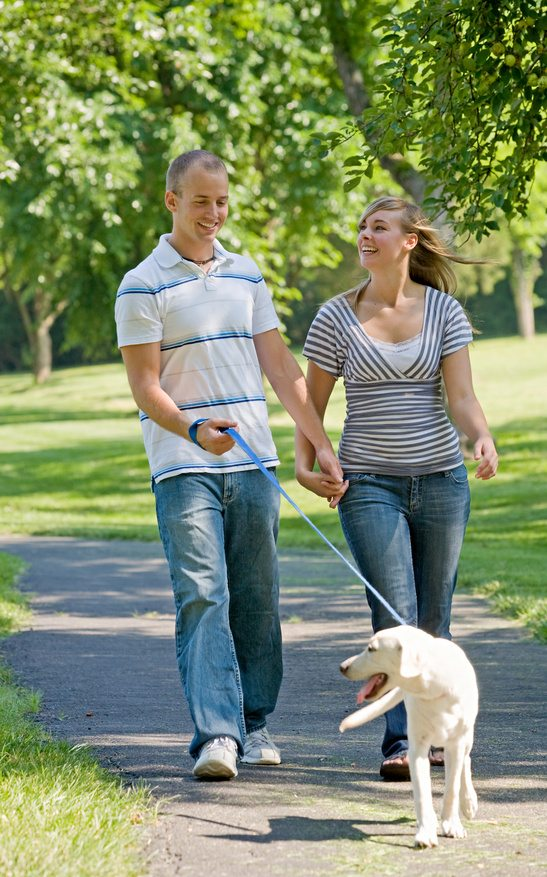 Young Couple Walking Dog
